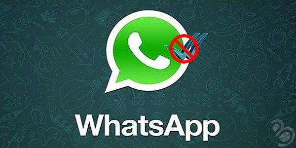 whatsapp-okundu-bilgisi