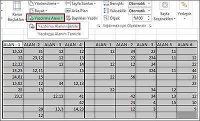 Excel-Secili-Alan-Yazdir-2