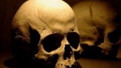 Bin 800 yıllık kafatası canlandırıldı!