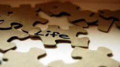 Hayat Sana Vuracak, Sen Kalkacaksın…