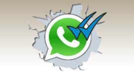 WhatsApp' ta Mavi Tik Özelliği Nasıl Kapatılır?